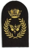 Picture of Communications Information Systems (Gold Badges) (Serial 070.1) CIS Principle (Gold)