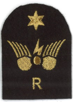 Picture of Communications Information Systems (Gold Badges) (Serial 096.1) Radio Intermediate (Gold)