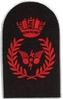 Picture of Communications Information Systems (Red badges) (Serial 070.2) CIS Principle (Red)
