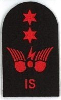 Picture of Communications Information Systems (Red badges) (Serial 072.2) Information Systems Advanced (Red)