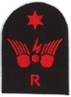 Picture of Communications Information Systems (Red badges) (Serial 096.2) Radio Intermediate (Red)