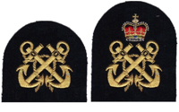Picture of Adult Arm Badges of Rank