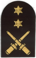 Picture of (Serial 078.1) Drill Instructor (Gold)