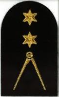 Picture of Navigation (Gold Badges) (Serial 090.1) Navigation Advanced (Gold)