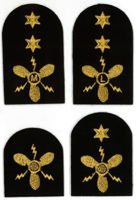 Picture of Marine Engineering (Gold Badges)