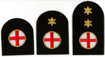 Picture of First Aid (Gold Badges)