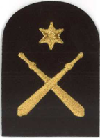 Picture of Physical Training (Gold Badges) (Serial 103.1) PT Intermediate (Gold)