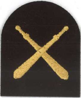 Picture of Physical Training (Gold Badges) (Serial 116.1) PT Basic (Gold)