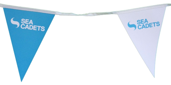 Picture of Bunting