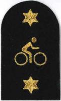 Picture of Mountain Bike (Serial 167.1) Mountain Bike Advanced (Gold)