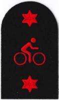 Picture of Mountain Bike (Serial 167.2) Mountain Bike Advanced (Red)