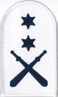 Picture of Physical Training (Blue on White Badges) (Serial 087) PT Advanced (Blue on White)