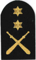 Picture of Physical Training (Gold Badges) (Serial 086.1) PT Advanced (Gold)