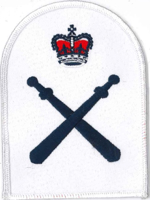 Picture of Physical Training Instructor (Adult) (Serial 034) Petty Officer Physical Training Instructor
