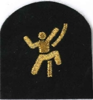 Picture of (Serial 172.1) Climbing Basic (Gold)