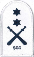 Picture of Physical Training (Blue on White Badges) (Serial 087.2) PT Advanced (Blue on White)