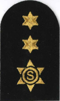Picture of Catering Stewarding Gold Badges (Serial 206) Catering / Stewarding Advanced Cadet (Gold)
