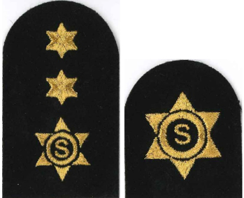 Picture of Catering Stewarding Gold Badges
