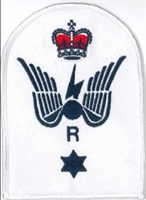 Picture of (Serial 049.5) Petty Officer Radio Advanced Instructor (Blue)