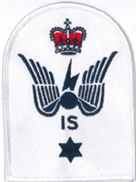 Picture of (Serial 046) Petty Officer Information Systems Advanced Instructor (Blue)