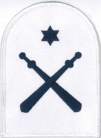 Picture of Physical Training Instructor (Adult) (Serial 034.5) Chief Petty Officer/Petty Officer Physical Training Instructor (Blue)