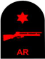 Picture of (Serial 162.6) Air Rifle Advanced (Red)